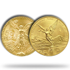 Mexican Gold Libertads And Onzas
